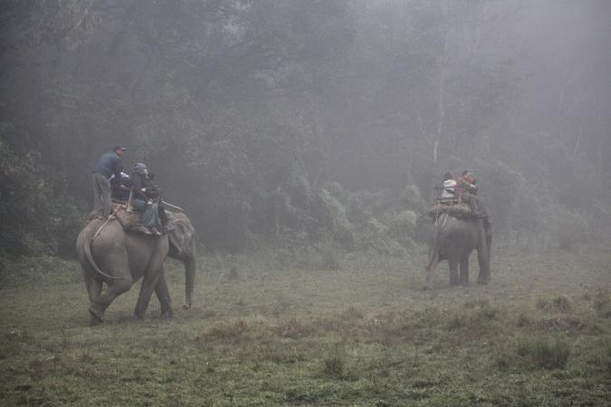 Chitwan Ulusal Park Fil Safari