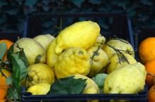 Vezüv'ün hışmına uğramış gibi görünen bu limonların eğri büğrü olduğuna bakmayın, müthiş tatlı ve sulular!