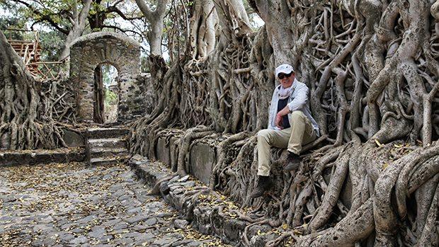 Gondor şehrindeki banyan ağacının altında hayatın gizemi saklı