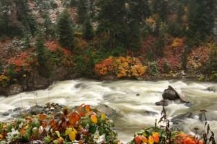 Erhan Köken - Papart Ormanı ve Karçal Dağları
