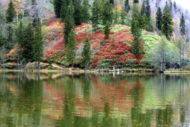 Faruk Terzihan - Papart Ormanı ve Karçal Dağları