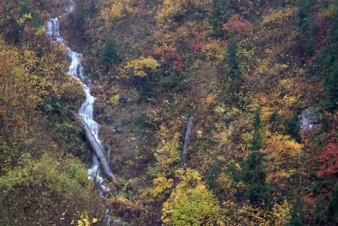 Hakan Alper Türkgür - Papart Ormanı ve Karçal Dağları