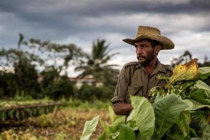 Küba- Nevzat Gökmen