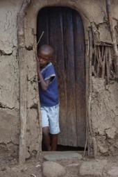 Kenya-Velit Gazel