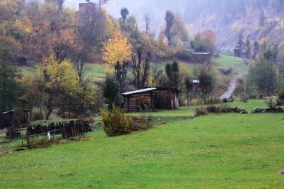 Tülin Kaynak - Papart Ormanı ve Karçal Dağları