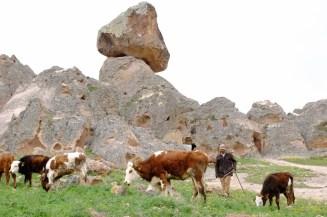 Faruk Akbaş