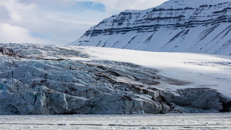 fjordlar