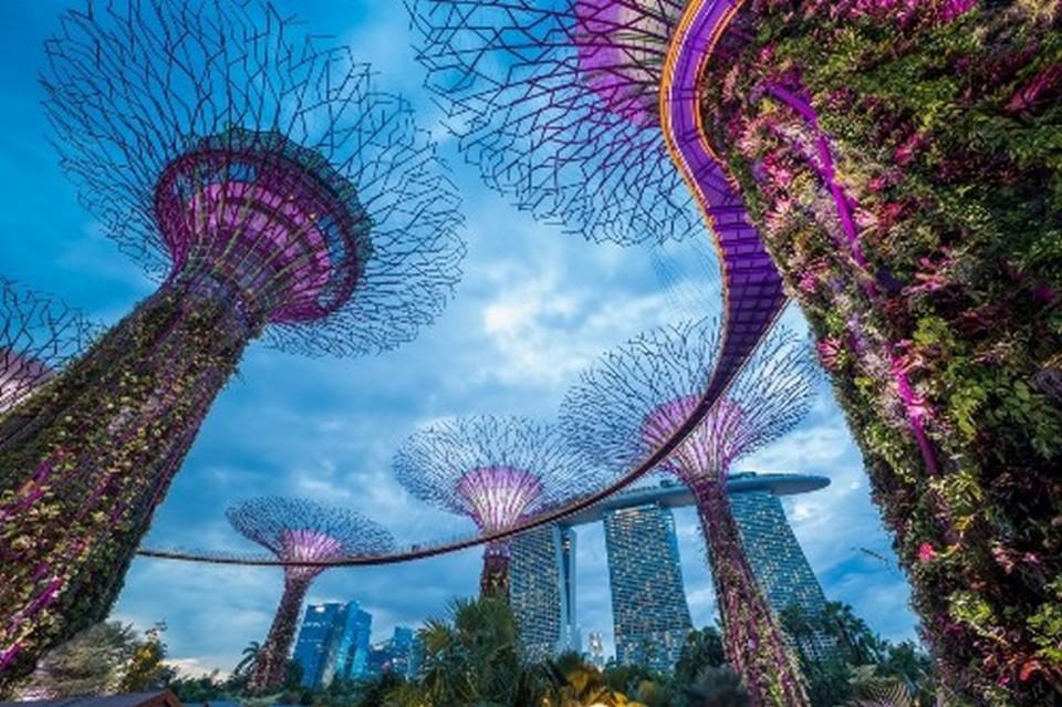 singapore_shutterstock_377070661 (Kopyala) (Kopyala)